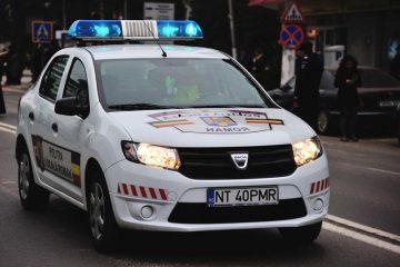 Scandal la CPU Spital Roman, acte de comerț în afara Pieței Centrale, cal mort pe carosabil