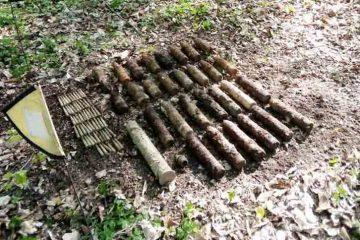 Neamț: Bombe descoperite în pădure
