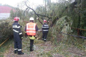 Furtună în Neamț: 8 posturi de transformare afectate, sute de consumatori din zona Roman, fără curent