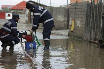 Efectele precipitațiilor, la Roman: arbori căzuți, stradă inundată și un beci surpat