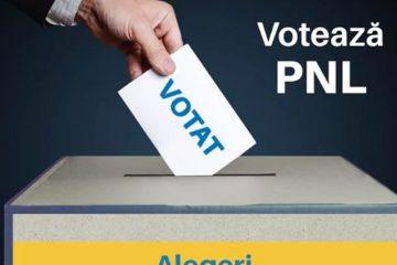 PNL Neamț: Duminică Neamțul va fi în primul rând! Nemțenii vor ieși la vot pentru România, pentru Uniunea Europeană!