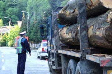 Acțiune în forță a polițiștilor nemțeni în urma căreia au fost confiscate lemne fără documente justificative