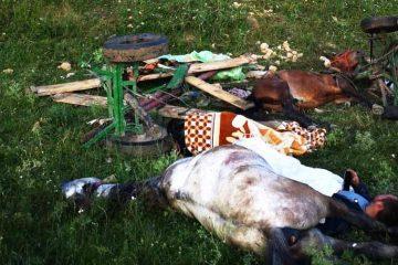 Neamț: un tânăr se află în comă și alți trei tineri sunt grav răniți după ce au căzut cu căruța în prăpastie, noaptea trecută