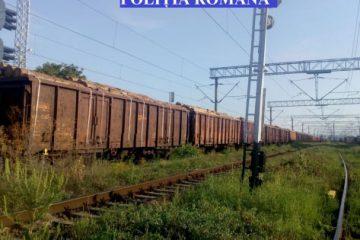 Național: o garnitură de tren (40 de vagoane) cu lemne, fără documente, a fost indisponibilizată de polițiști