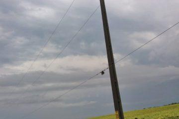 Furtună în zona Roman: peste 550 de consumatori fără energie electrică, trei localități afectate