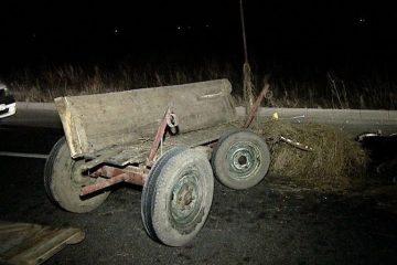 Căruțaș, cu peste 1,30 mg/l alcool pur în aerul expirat, implicat într-un accident rutier, pe DN 15D Roman – Piatra Neamț