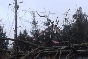 Vijelie în Neamț: peste 5000 de consumatori nu sunt alimentați cu energie electrică