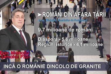 """Senator Dan Manoliu: """"Românii din diaspora reclamă slaba implicare a autorităților locale"""""""