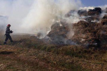 Incendiu lângă o crescătorie de pui, din comuna Botești