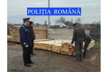 Neamț: material lemnos confiscat de polițiști în urma unor controale efectuate pentru combaterea tăierilor ilegale