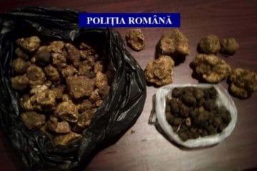 Trufe descoperite de polițiștii din Ion Creangă într-o mașină condusă de un tânăr din Oniceni