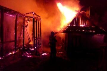 Neamț: Mai multe păsări moarte și pagube importante la o locuință în urma unui incendiu produs noaptea trecută