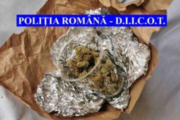 Neamț: în urma a 9 percheziții, au fost indisponibilizate 1,6 kilograme de cannabis și au fost reținute 8 persoane