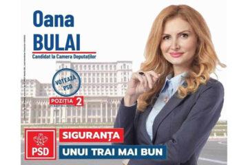"""Oana Bulai: """"PSD susține un învățământ de calitate, cu șanse reale la educație pentru fiecare elev"""""""